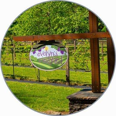Evelyn's Vineyard hanging sign
